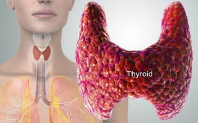 Bolesti štitaste žlezde sa osvrtom na karcinom – Videokonferencija